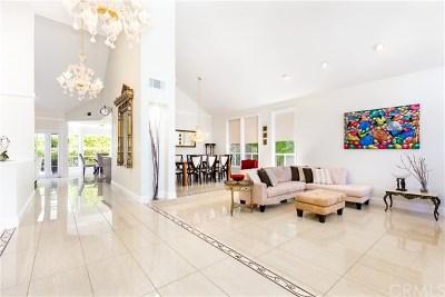 Laguna Niguel Single Family Home For Sale: 28602 Silverton Drive