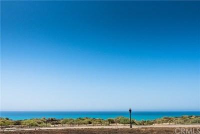 San Clemente Single Family Home For Sale: 301 Via Salamanca