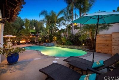 San Juan Capistrano Single Family Home For Sale: 31291 Via Fajita