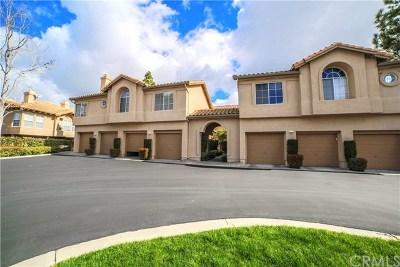 Orange County Condo/Townhouse For Sale: 25 Fulmar Lane