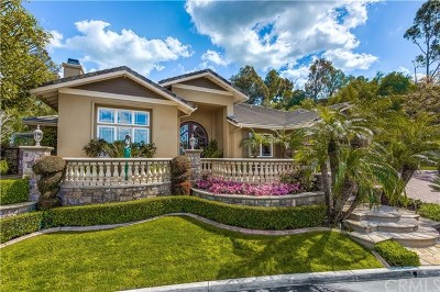Anaheim Hills Single Family Home For Sale: 590 S Falling Star Drive