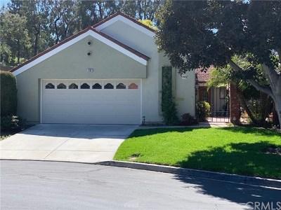 Laguna Woods Condo/Townhouse For Sale: 5162 Belmez