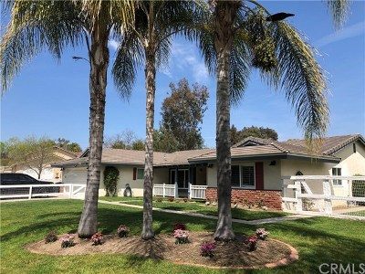 Temecula Single Family Home For Sale: 30220 Del Rey Road