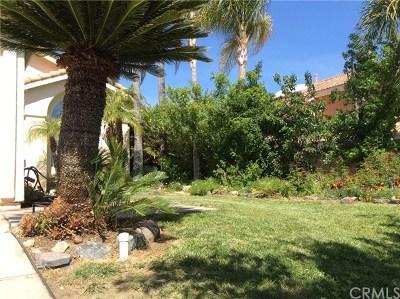 Murrieta Single Family Home For Sale: 23666 Ballestros Road