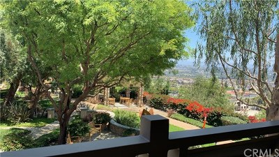 Aliso Viejo Condo/Townhouse For Sale: 6 Meridian Drive