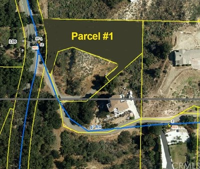 Orange County Residential Lots & Land For Auction: 30295 Hunky Dory