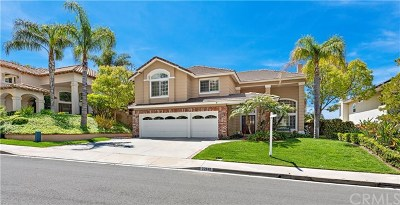 Rancho Santa Margarita Single Family Home For Sale: 32842 Brookseed Drive