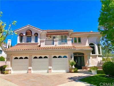Rancho Santa Margarita Single Family Home For Sale: 11 Sawmill
