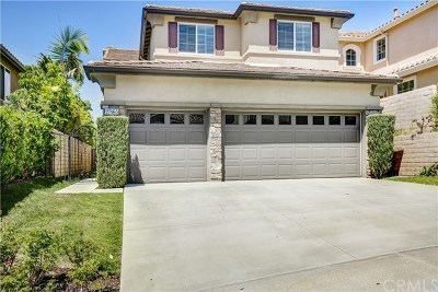 Laguna Niguel Single Family Home For Sale: 27465 Country Lane Road