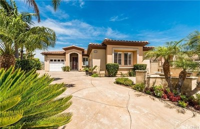 Dana Point Single Family Home For Sale: 33602 Holtz Hill Road