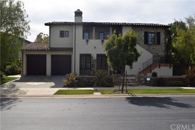 Newport Coast Rental For Rent: 2 Canyon Peak