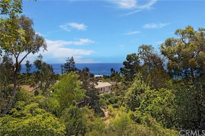 Laguna Beach Single Family Home For Sale: 31471 Ocean View Street