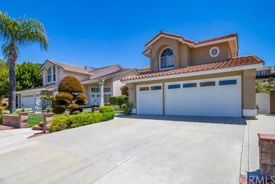 Rancho Santa Margarita Single Family Home For Sale: 20912 Morningside Drive