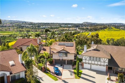 Laguna Niguel Single Family Home For Sale: 28351 Chat Drive