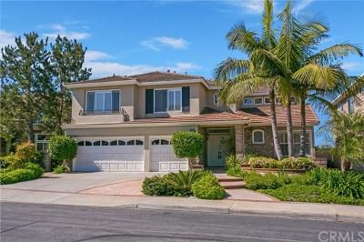 Laguna Niguel Single Family Home For Sale: 22 Saint Paul Lane