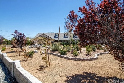 Apple Valley Single Family Home For Sale: 19995 Chickasaw Road