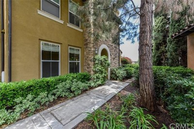 Irvine Condo/Townhouse For Sale: 202 Lonetree