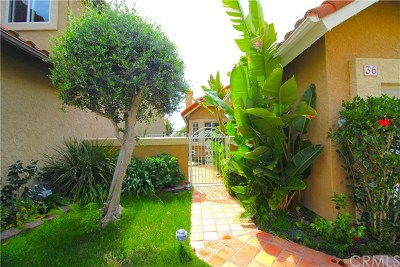 San Clemente Single Family Home For Sale: 36 Finca