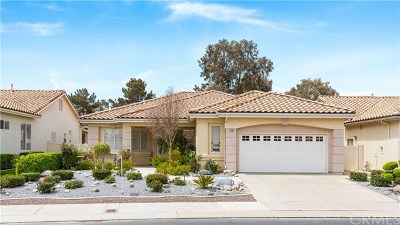 Banning Single Family Home For Sale: 1647 Crystal Downs Street
