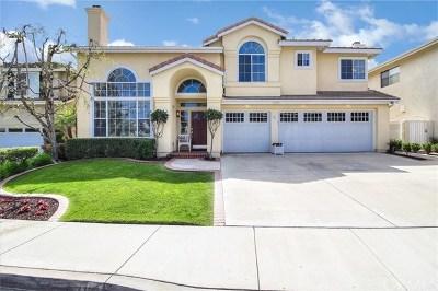 San Clemente Single Family Home For Sale: 2402 Via Mero