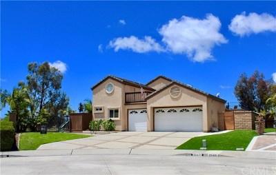 Laguna Niguel Single Family Home For Sale: 25471 Hillsboro Drive