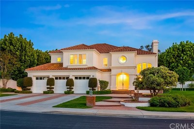 Irvine Single Family Home For Sale: 20 Brigadier