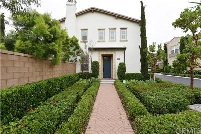 Single Family Home For Sale: 217 Desert Bloom