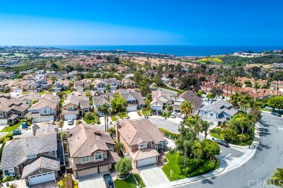 Laguna Niguel Single Family Home For Sale: 23942 Caravel Place