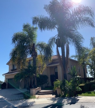 Mission Viejo Single Family Home For Sale: 30 Skycrest