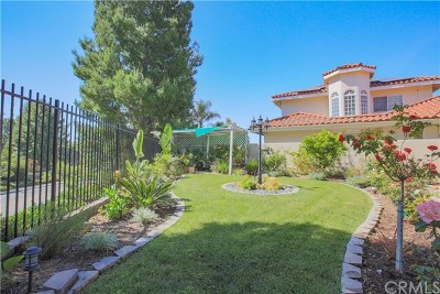 Orange Single Family Home For Sale: 3904 E Mandeville Place