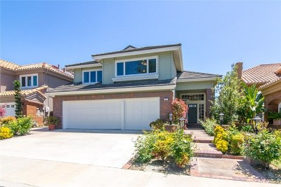 Laguna Niguel Single Family Home For Sale: 24 Mandalay