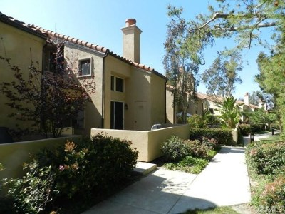 Orange County Rental For Rent: 106 Corsica Drive