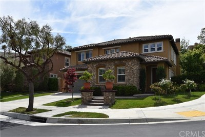 Aliso Viejo Single Family Home For Sale: 11 Emerald