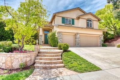Single Family Home For Sale: 27309 Blueridge Drive