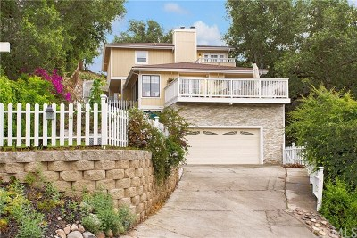 Trabuco Canyon Single Family Home For Sale: 31132 Mountain View Road