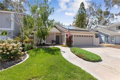 Mission Viejo Single Family Home For Sale: 23826 Birch Lane