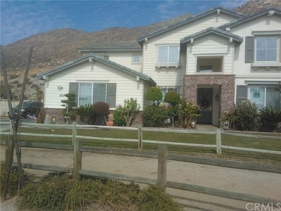 Norco Single Family Home For Sale: 425 Mount Shasta Drive