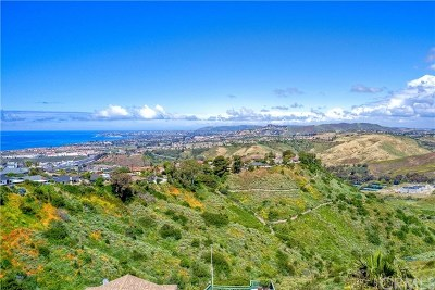 Orange County Residential Lots & Land For Auction: 721 Avenida Columbo