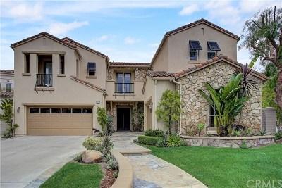 Coto De Caza Single Family Home For Sale: 12 Hubbard Way