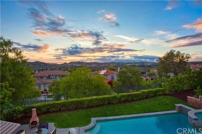 Coto De Caza Single Family Home For Sale: 29 Marble Creek Lane