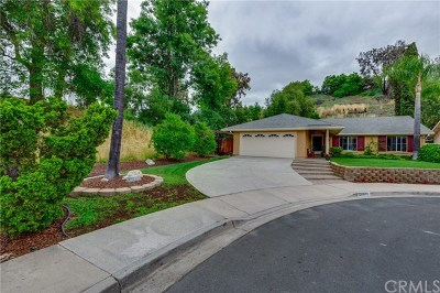 Mission Viejo Single Family Home For Sale: 24412 Ferrocarril