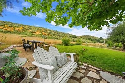Coto de Caza Single Family Home For Sale: 31632 Via Coyote