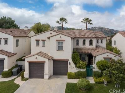 Temecula Single Family Home For Sale: 45827 Corte Ricardo
