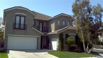 Aliso Viejo Single Family Home For Sale: 42 Lyon Ridge