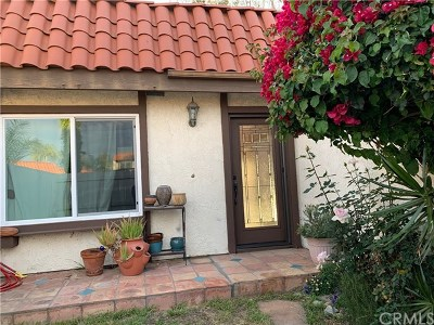 San Juan Capistrano Single Family Home For Sale: 30801 Paseo El Arco