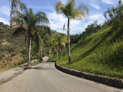 Temecula Residential Lots & Land For Sale: 42845 Calle Montecillo