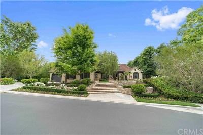 Coto De Caza Single Family Home For Sale: 1 Falconridge Drive