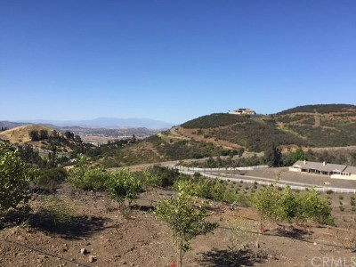 Temecula Residential Lots & Land For Sale: Calle De Cuerno