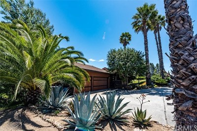 Escondido Single Family Home For Sale: 10209 Sage Hill Way