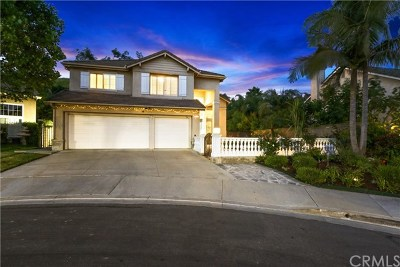 Chino Hills Single Family Home For Sale: 14783 Avenida Anita